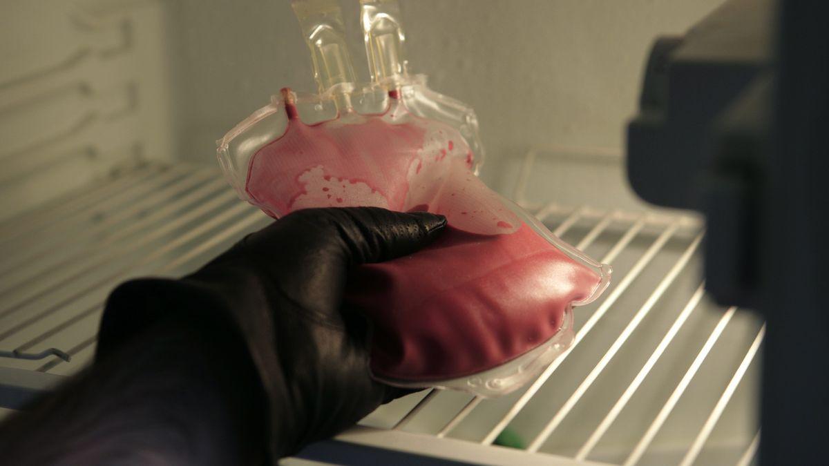 Blutbeutel im Kühlschrank