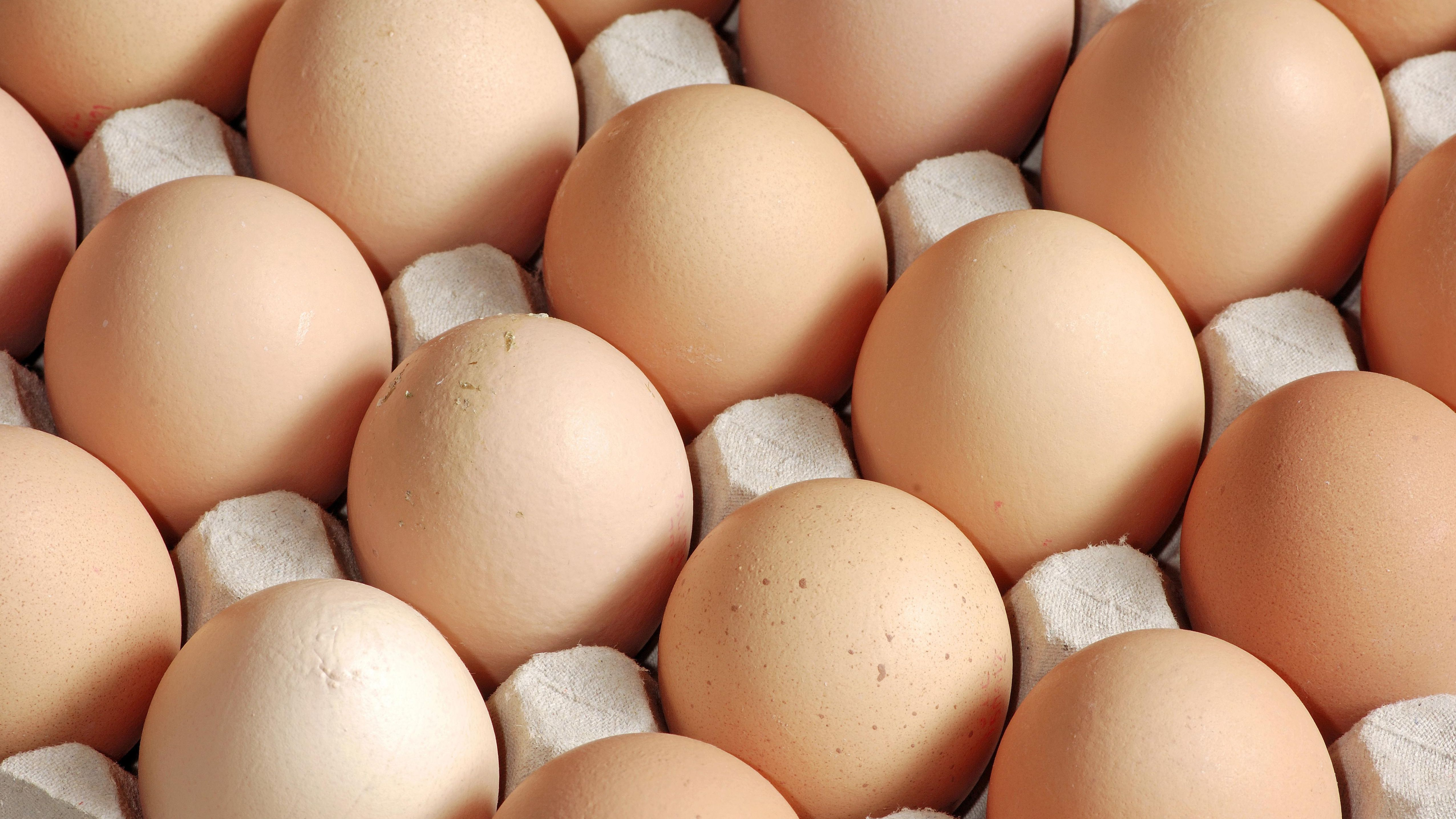 Eier in Verpackung