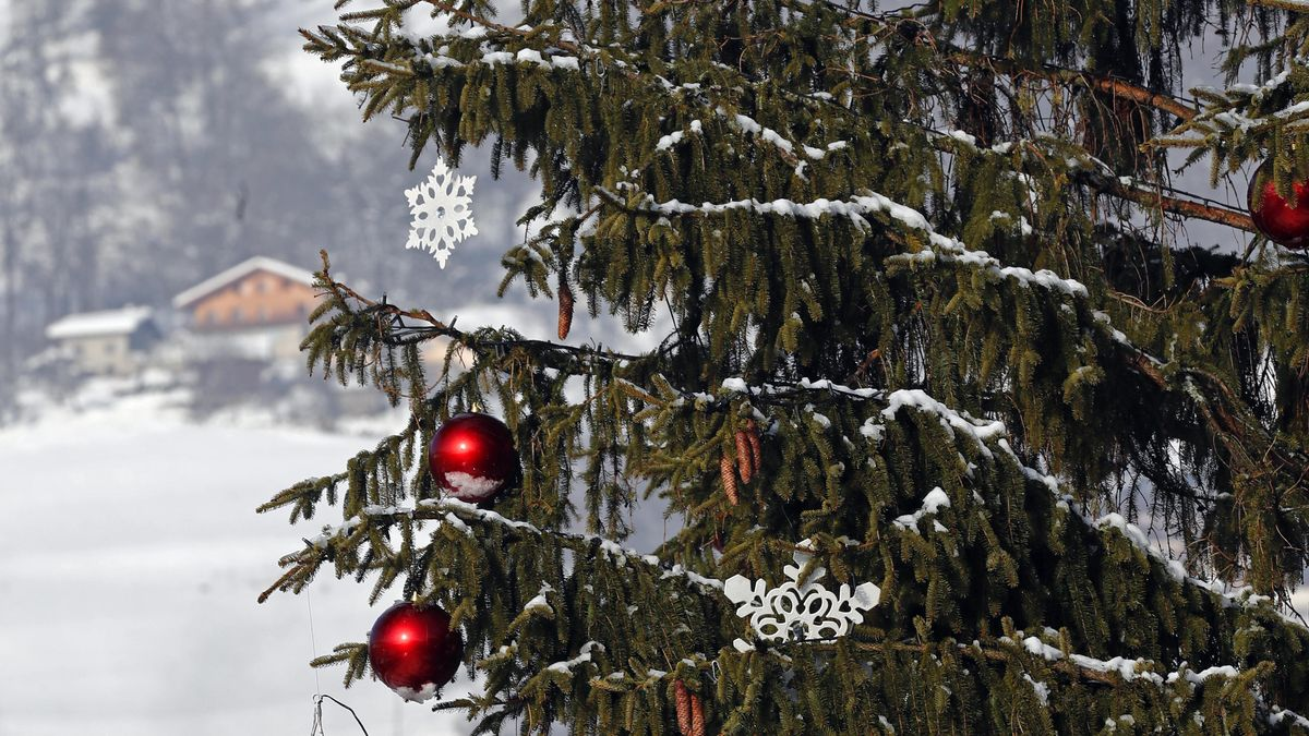 Eine weihnachtlich geschmückte Tanne vor einer Winterkulisse.