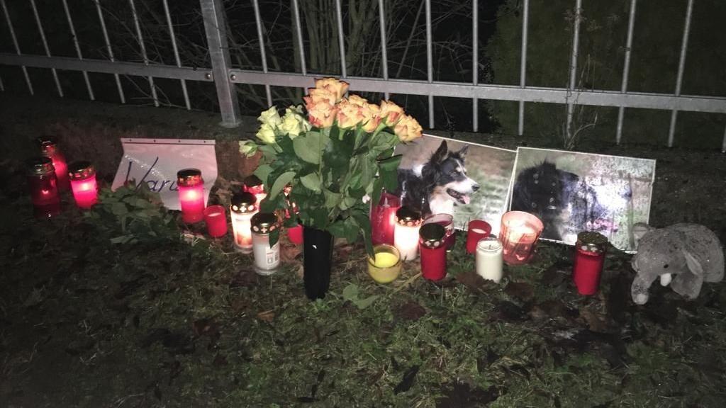 Als Andenken an die beiden Hündinnen haben Freunde des Halters Kerzen und Blumen aufgestellt.