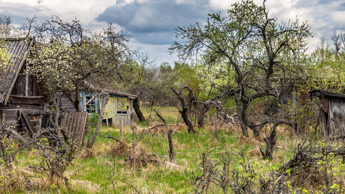 Verlassenes Dorf in Tschernobyl