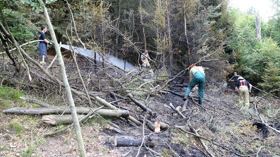 Feuerwehr löscht Waldbrand bei Obernburg (Lkr. Miltenberg)