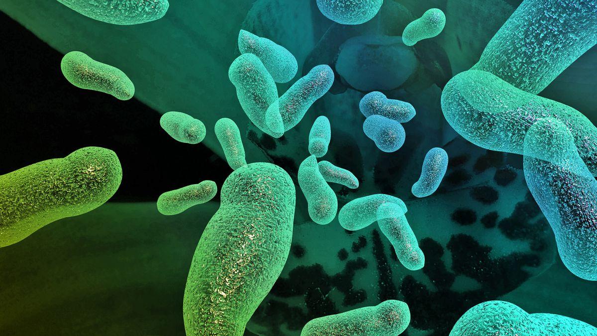 Bakterien (Sympboldarstellung)