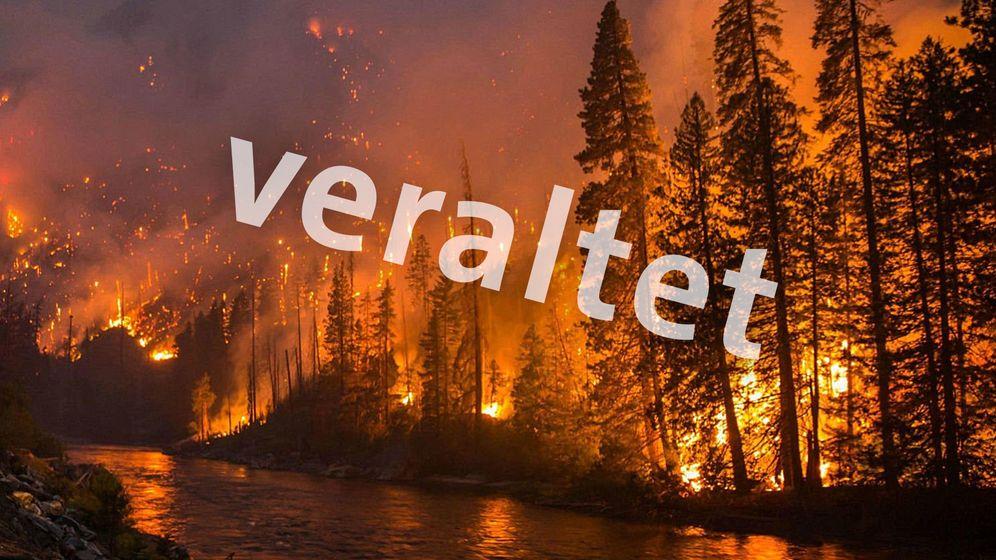 Ein Bild, das zum Thema Amazons-Brände kursiert - aber wohl aus den USA stammt | Bild:BR Grafik