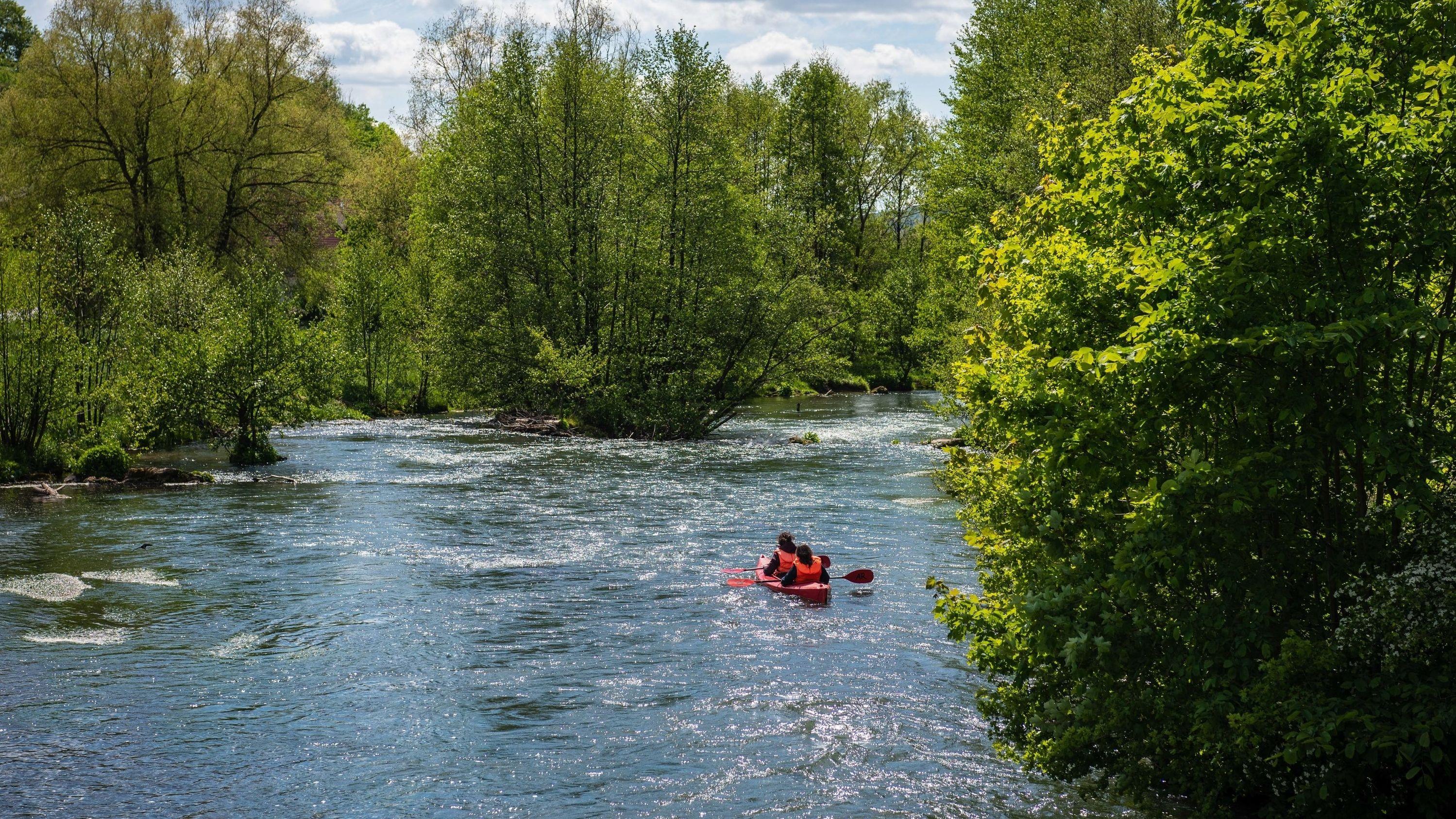 Ein Kanu paddelt inmitten von grünen Bäumen die Wiesent entlang.