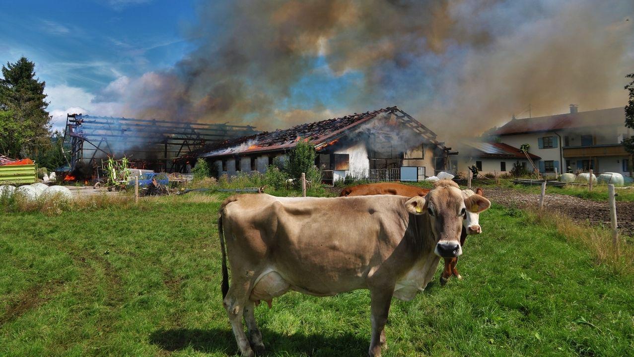 Großbrand auf einem Bauernhof in Probstried im Oberallgäu.