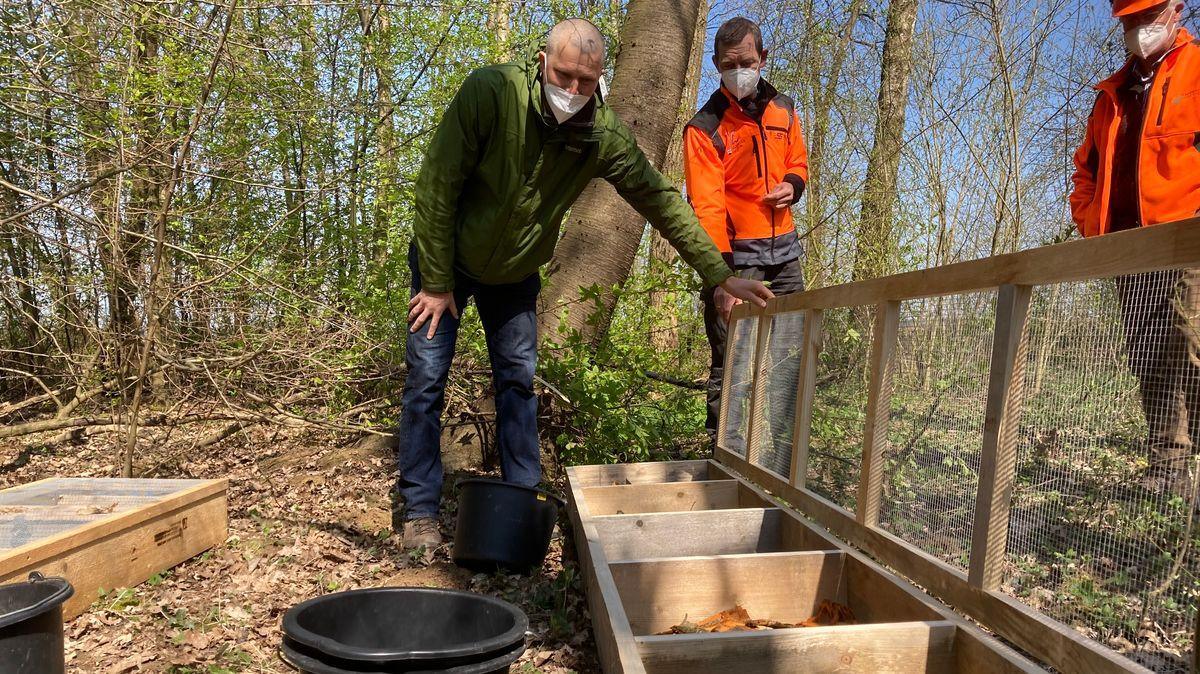 Forstwissenschaftler Stefan Wittkopf demonstriert die Streukästen, in denen die Rinde gesammelt und beim Vermodern untersucht wird.