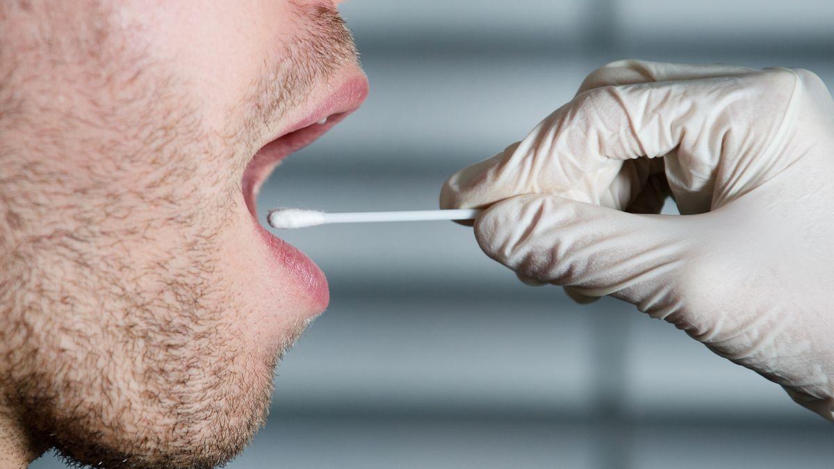 Eine Hand streicht mit einem Wattestäbchen in einen geöffneten Mund.