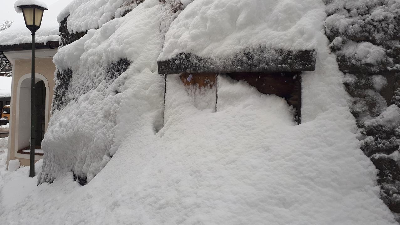 Der Schnee sammelt sich nicht nur auf Dächern, sondern auch auf und an Bäumen