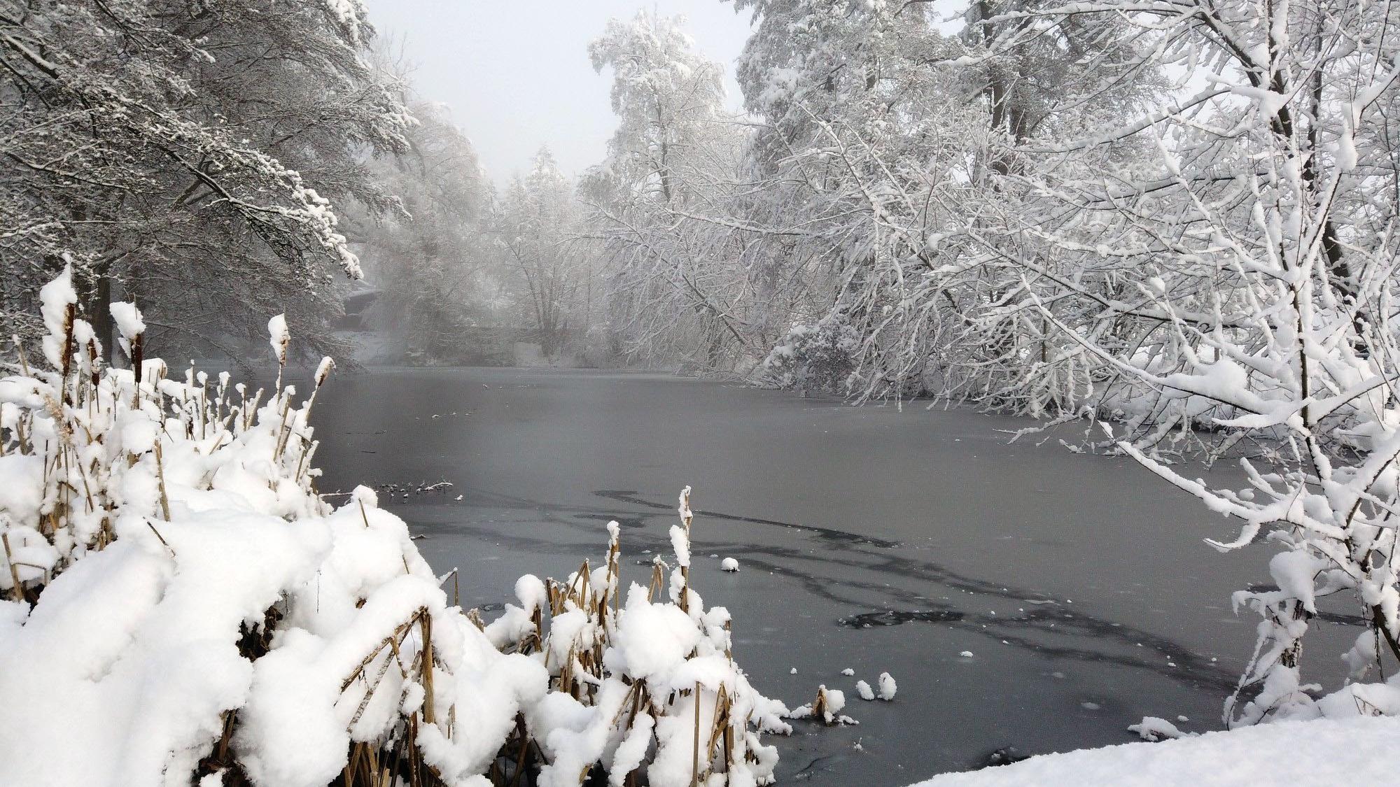 Winterlandschaft in Roding im Landkreis Cham