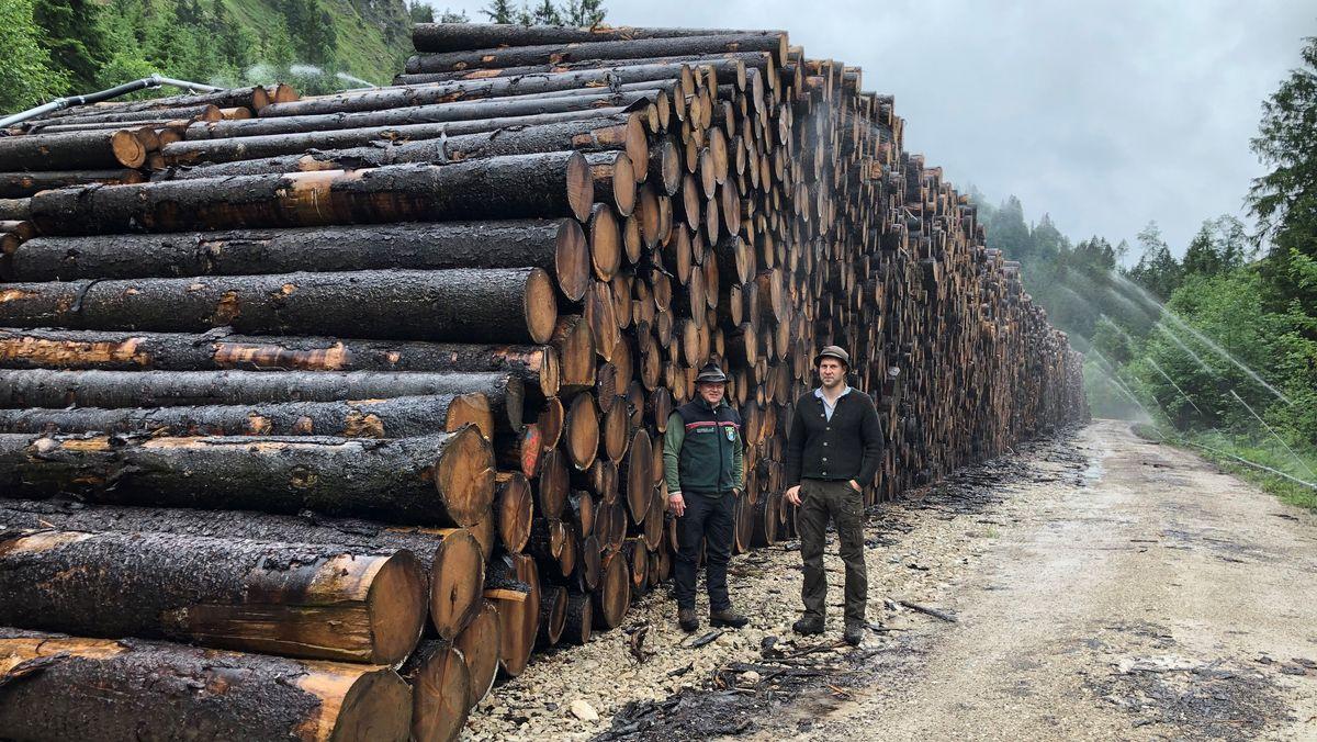 Stephan Kleiner vom Forstamt Kaufbeuren und Christian Neutzner vom Rechtlerverband Pfronten vor Holz-Nasslager