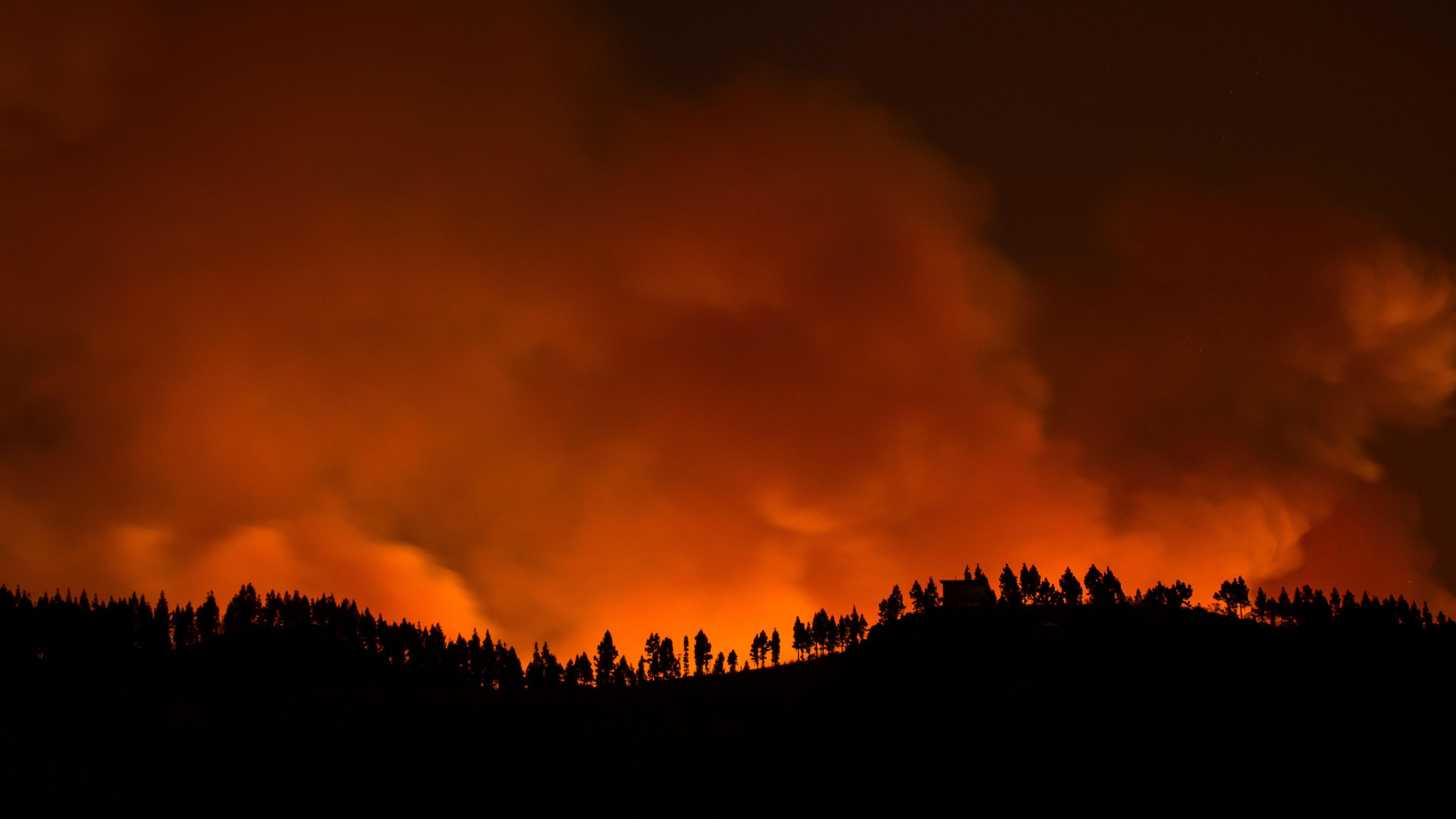 Flammen und Rauch in einem brennenden Wald auf der Insel Gran Canaria