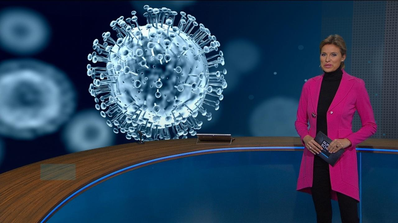 Anuschka Horn mit Bild des Corona-Virus