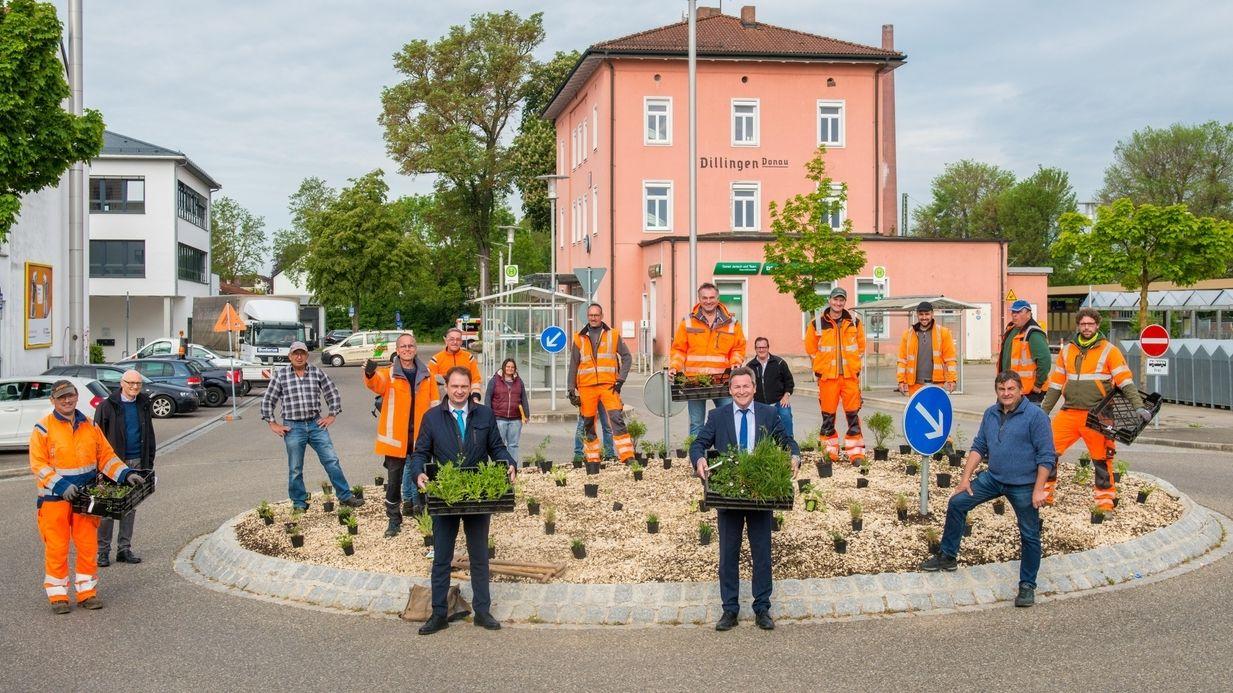 """Projektstart von """"Unser Landkreis blüht auf"""" an einem Kreisverkehr am Bahnhof in Dillingen mit Dillingens OB Frank Kunz und dem Dillinger Landrat Leo Schrell (rechts)."""