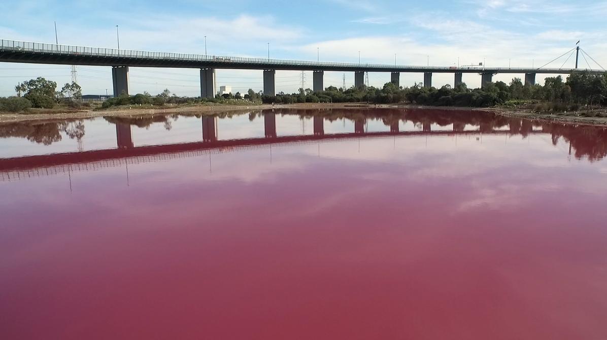 Ein See in knalligem Pink