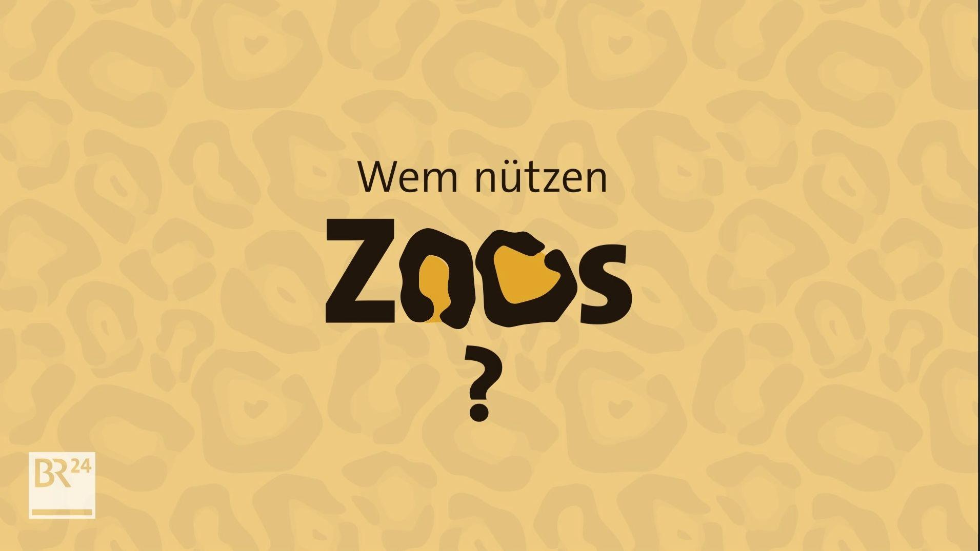 Sind Zoos überhaupt noch zeitgemäß? #fragBR24 erklärt
