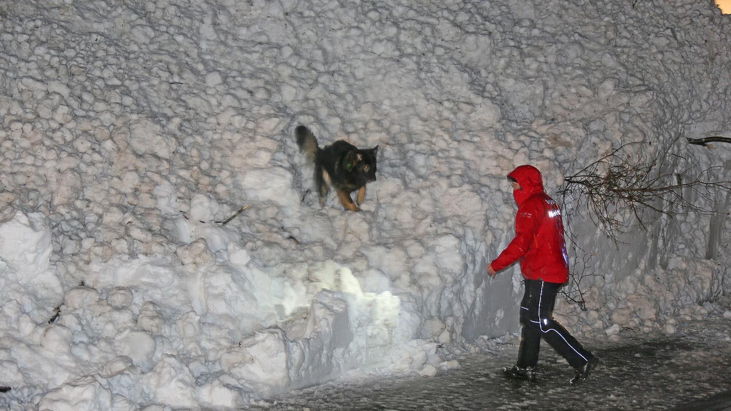 Die Bergwacht suchte mit Lawinenhunden die abgegangene Lawine ab.