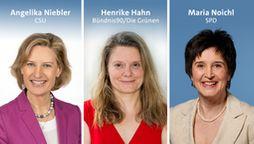 Angelika Niebler (CSU), Henrike Hahn (Bündnis 90 / Die Grünen) und Maria Noichl (SPD)  | Bild:dpa-Bildfunk, Bildcombo: BR