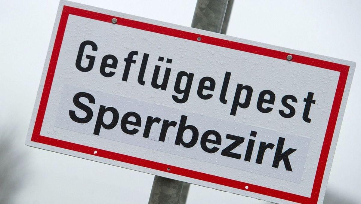 """Ein Schild mit der Aufschrift """"Geflügelpest Sperrbezirk"""""""