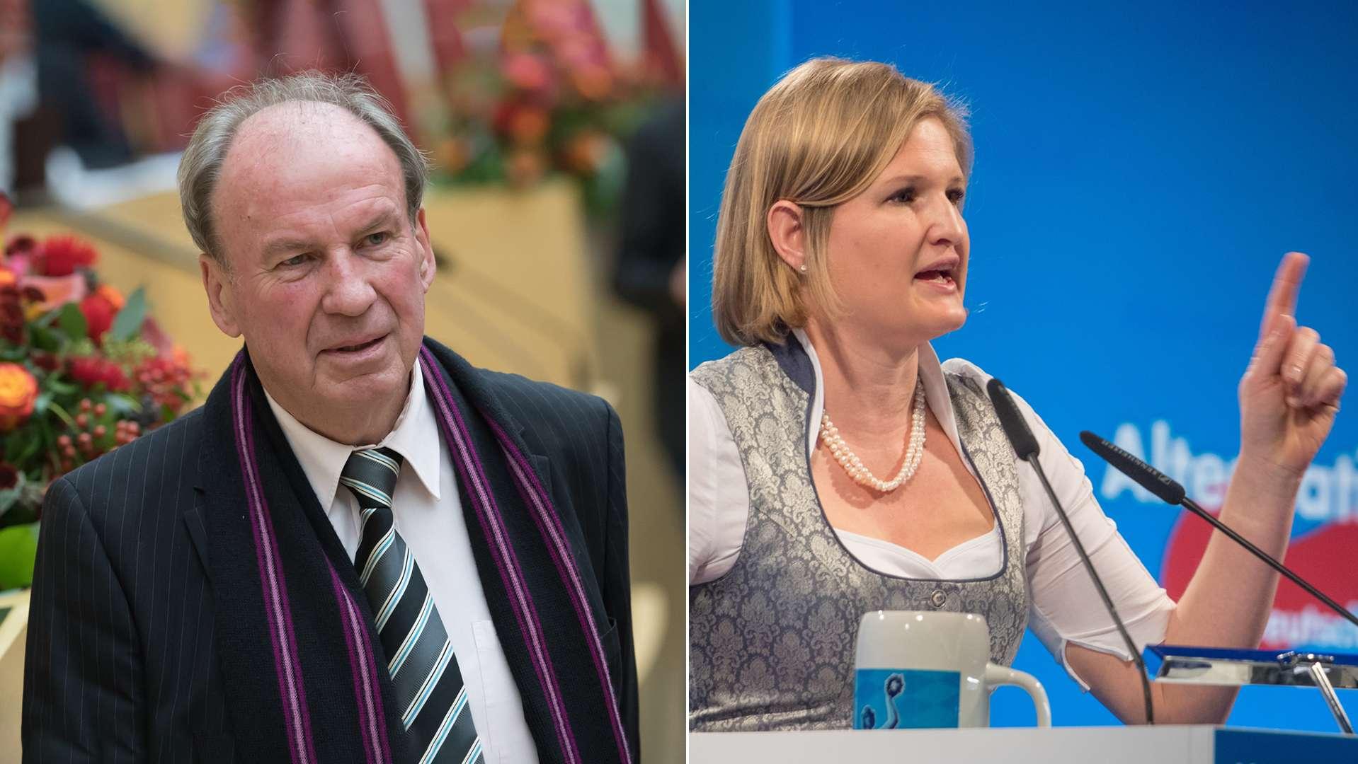 Raimund Swoboda und Katrin Ebner-Steiner, Collage