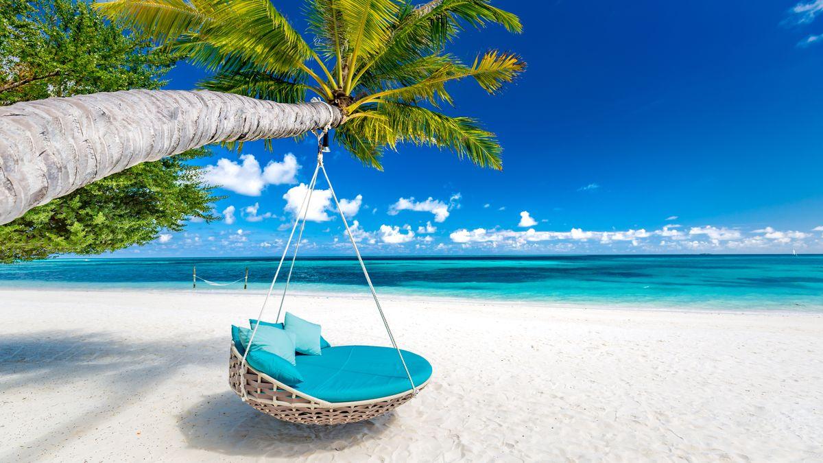 Eine große Korbhängematte hängt an einer Palme auf einer karibischen Insel mit weißem Sandstrand.
