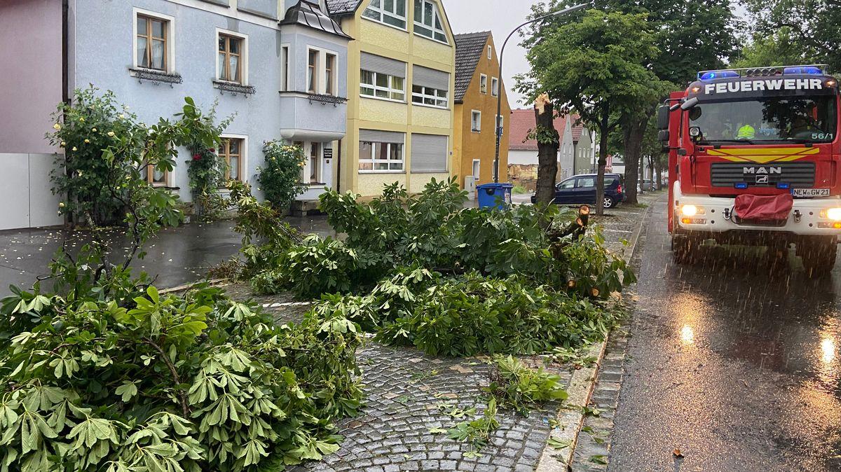 Umgestürzte Bäume in Neustadt an der Waldnaab.