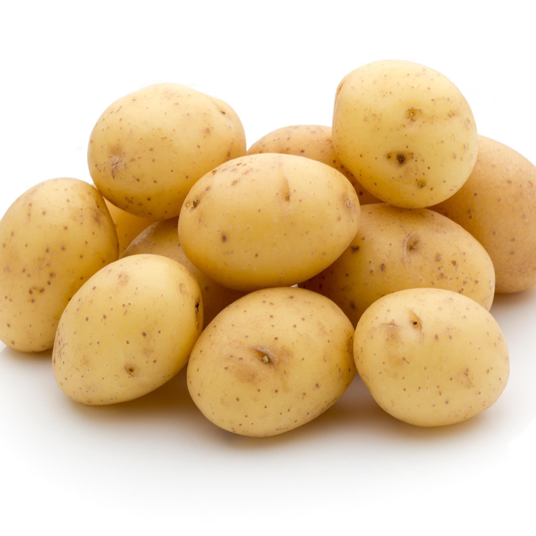 Kartoffel - Die nahrhafte Knolle