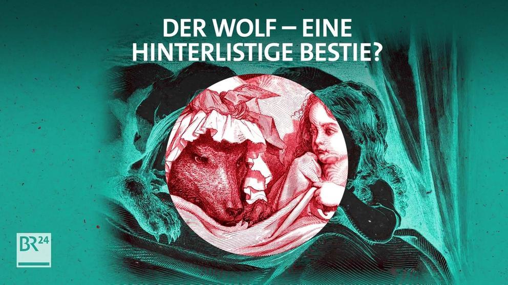Das Märchen vom bösen Wolf | Bild:BR
