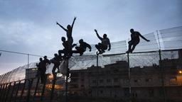 Abendbild: Migranten aus dem Südsahararaum beim Überwinden des Grenzzauns der spanischen Enklave Ceuta. Einige hangeln sich noch am Zaun hoch, andere sind bereits oben und recken jubelnd die Arme in die Höhe.   Bild:picture alliance / AP Photo Anbieter:picture alliance/AP  Fotograf:Santi Palacios