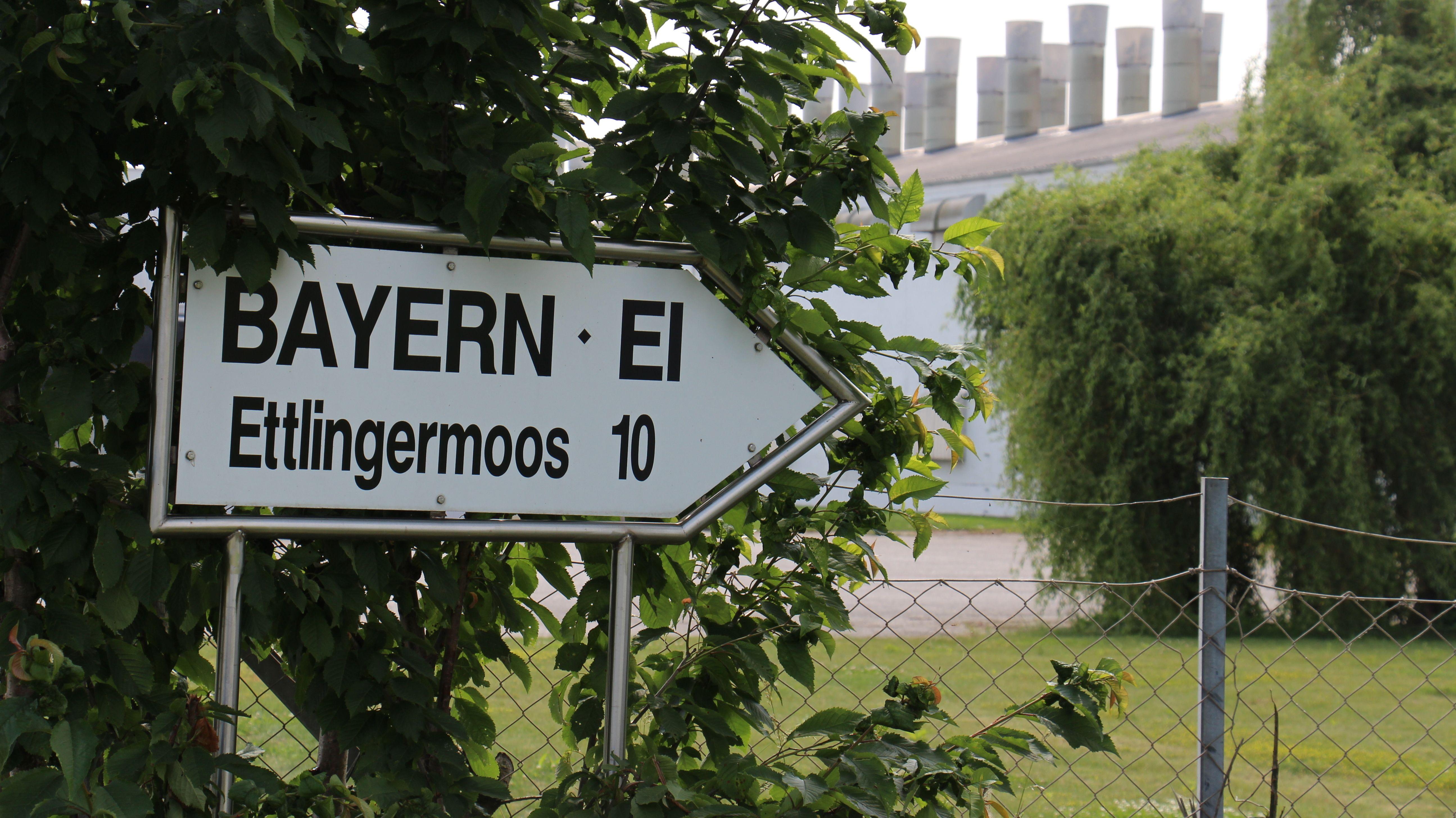 Bayern-Ei-Geflügelzuchtbetrieb Ettlingermoos