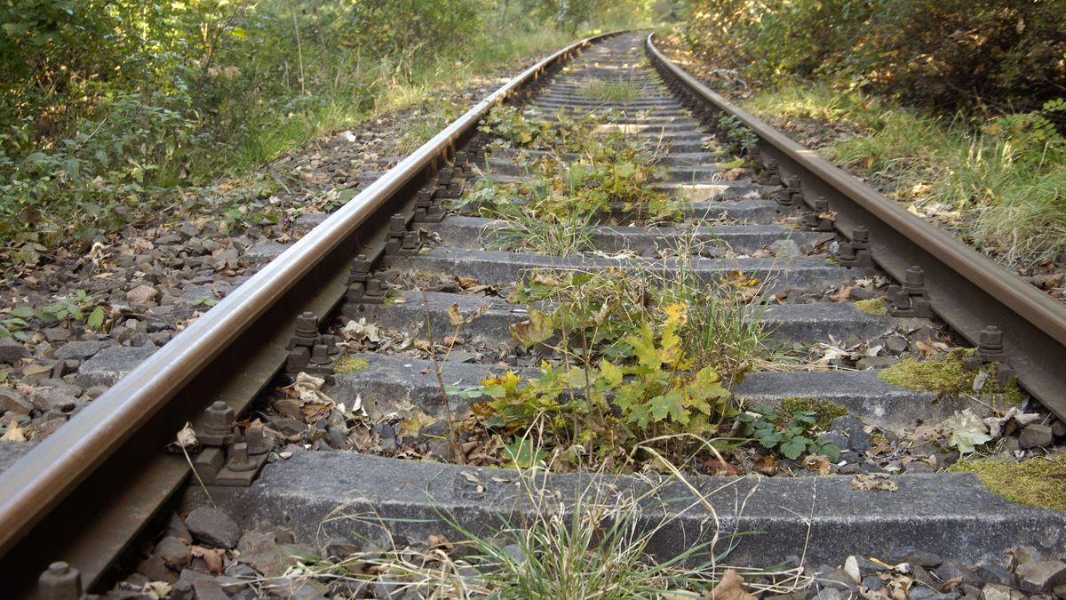 Grüne verabschieden Resolution zur Steigerwaldbahn