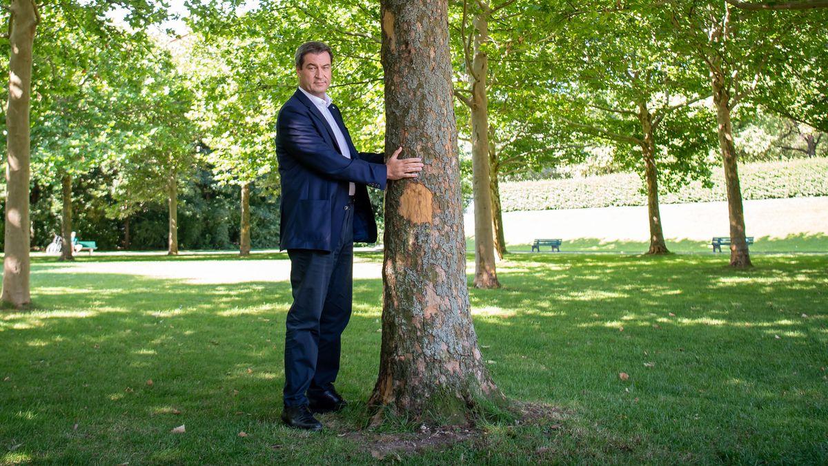 2019: Bayerns Ministerpräsident Markus Söder (CSU) umarmt am 10. Juli dezent einen Baum im Hofgarten hinter der Staatskanzlei in München.