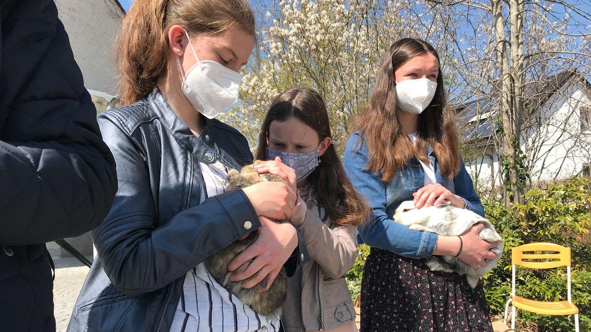 Drei Mädchen stehen mit Kaninchen im Arm in einer Reihe