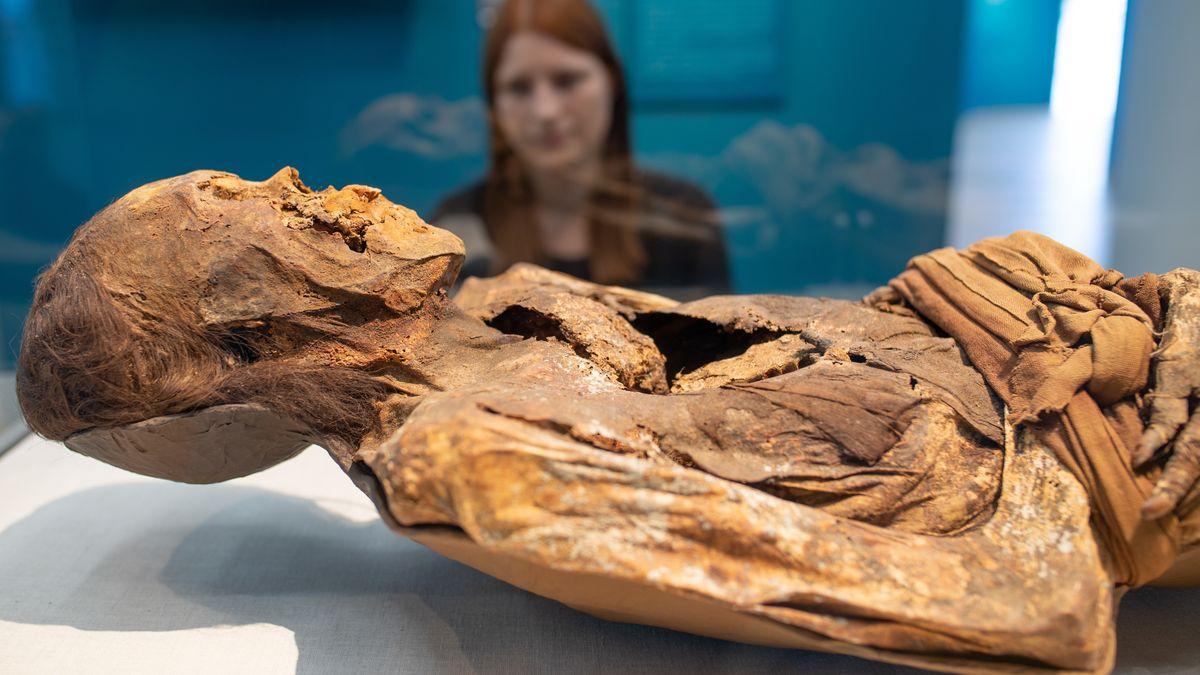Eine Mumie aus Peru wird ausgestellt.