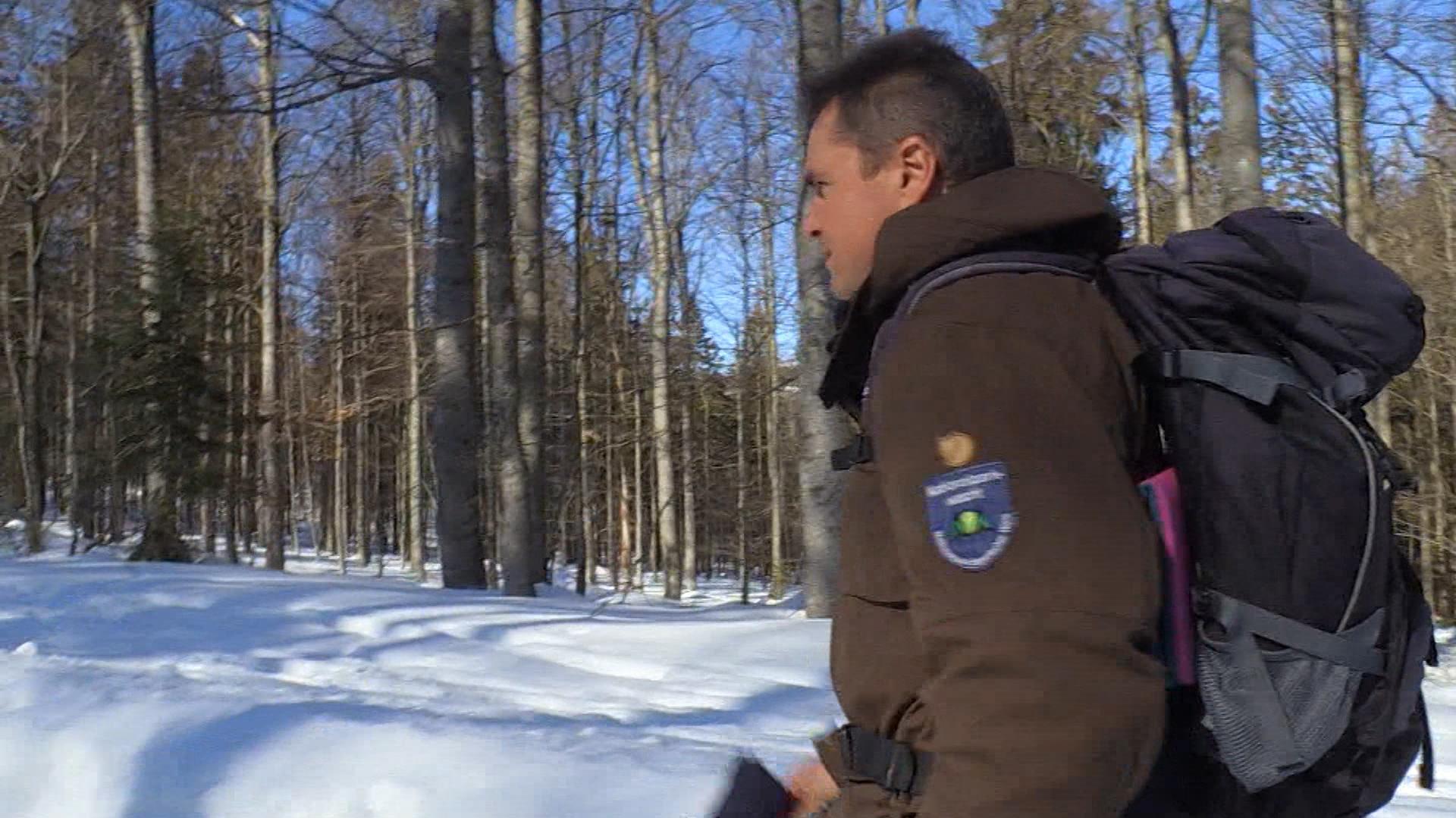 Unterwegs im Bayerischen Wald mit dem Ranger Sigi Schreib.