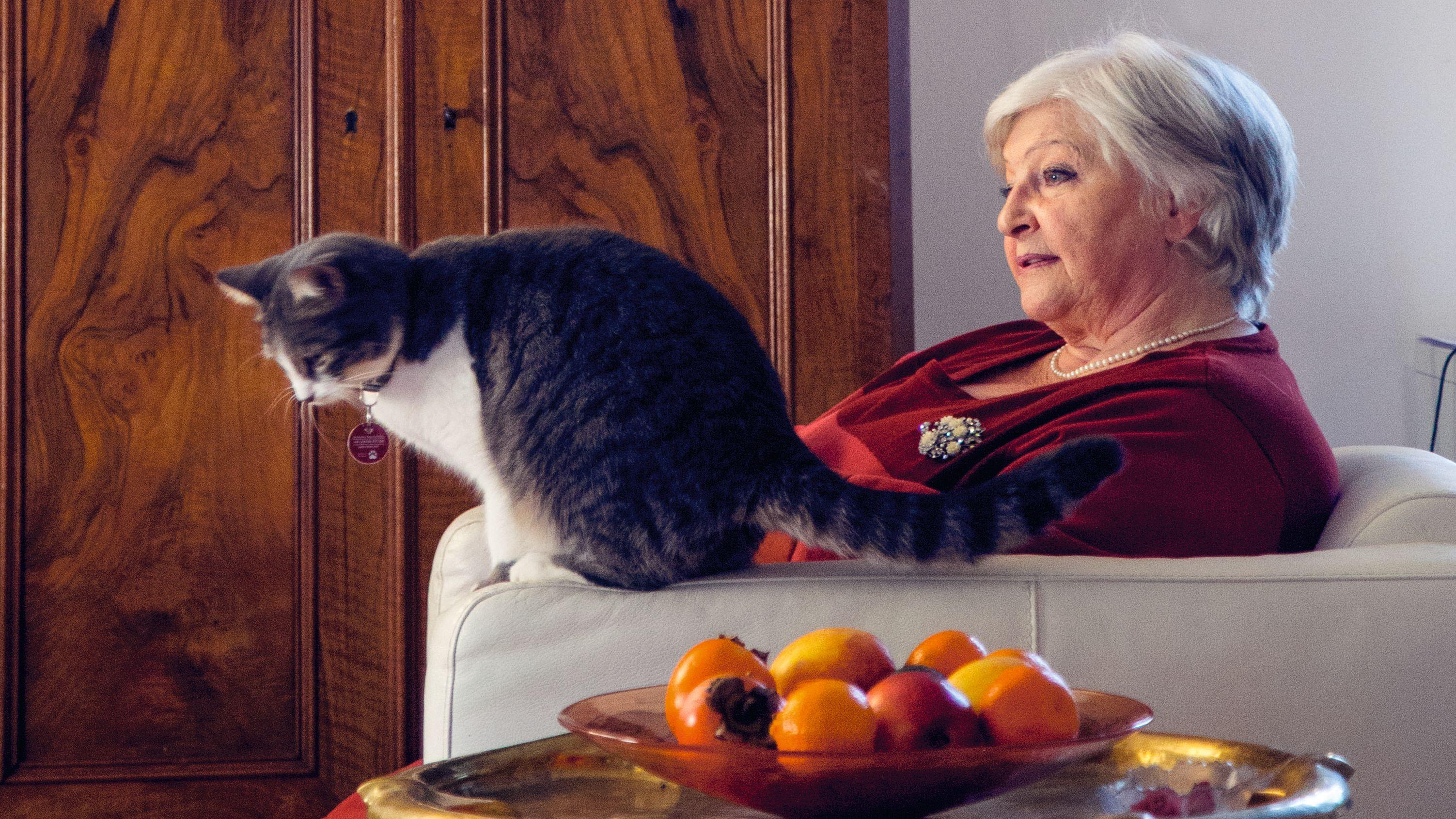 Eine ältere Frau sitzt in einem Sessel, auf der Lehne ist eine Katze.