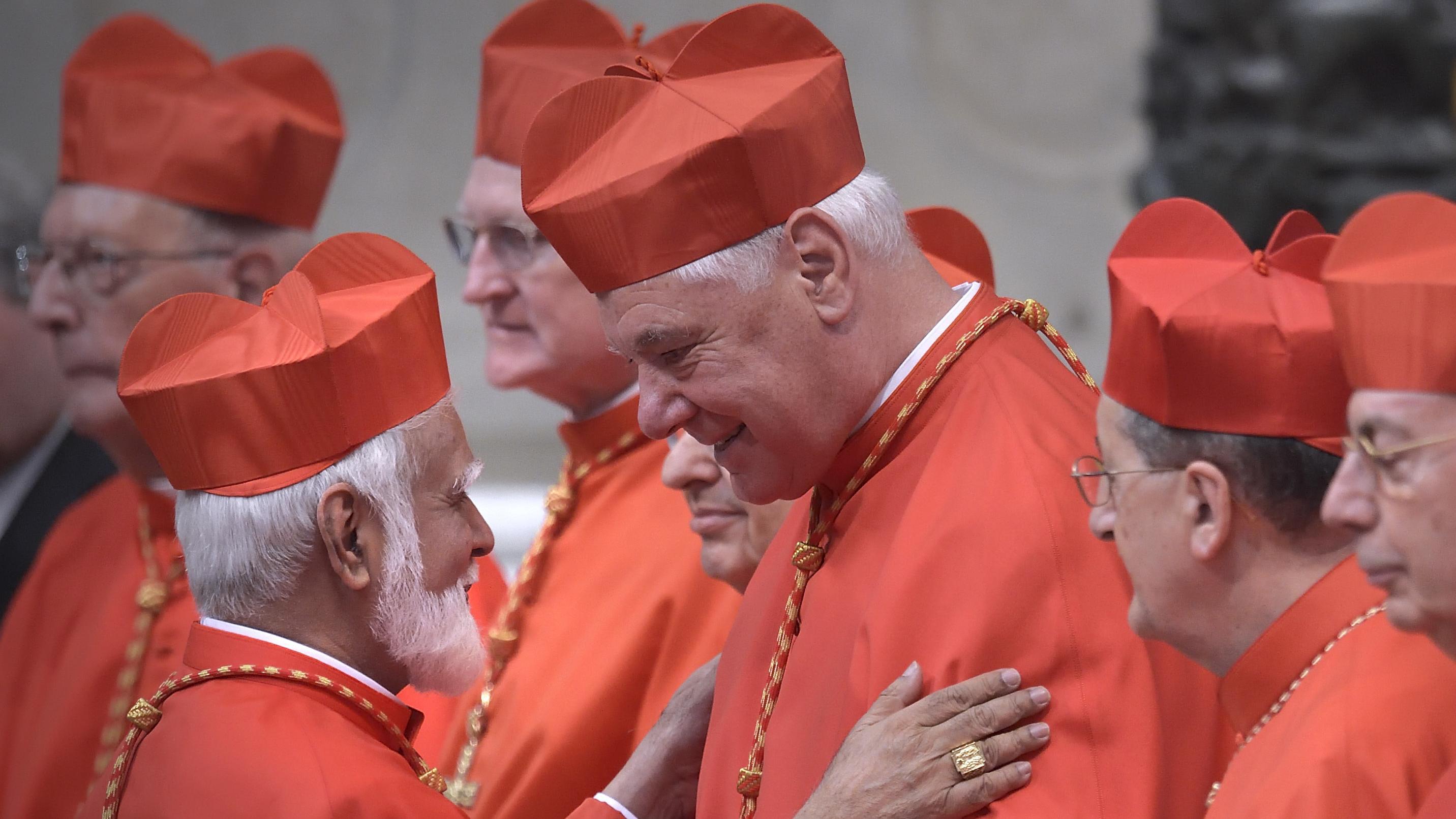 Kardinal Gerhard Ludwig Müller mit anderen Kardinälen im Petersdom