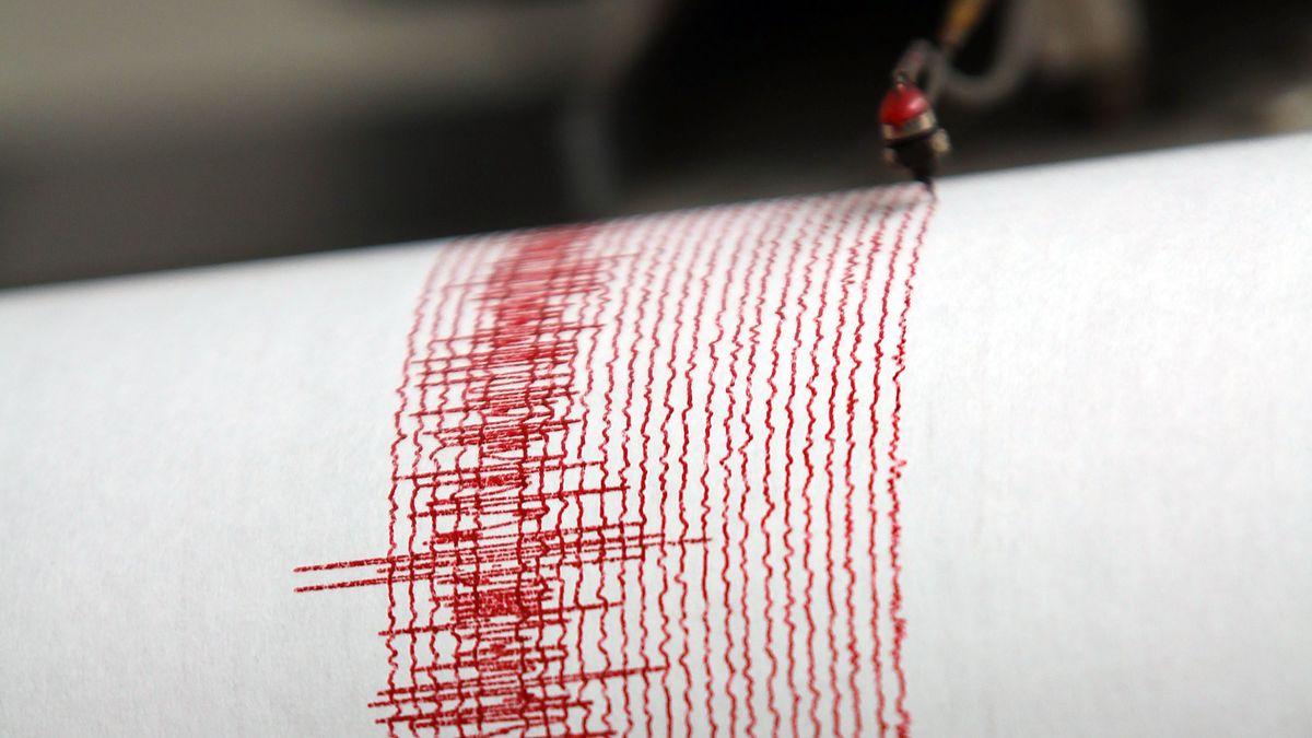 Ein Seismograf zeichnet Bodenerschütterungen von Erdbeben und anderen seismischen Wellen auf. (Symbolbild)