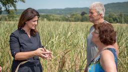 Die bayerische Landwirtschaftsministerin Kaniber steht vor einem Maisfeld und spricht mit einem Mann und einer Frau. Das Foto wurde bei einer Veranstaltung zum Thema Dürreschäden aufgenommen. | Bild:Bayerisches Staatsministerium für Ernährung, Landwirtschaft und Forsten