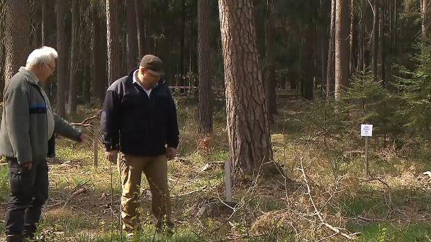 Zwei Männer begutachten den Klimawald in Bayreuth