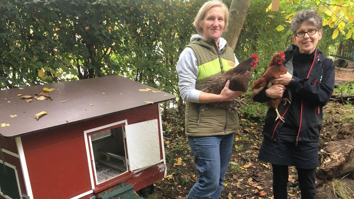 Monika Köllner und Erzieherin Miriam Pfänder mit zwei Miet-Hühnern