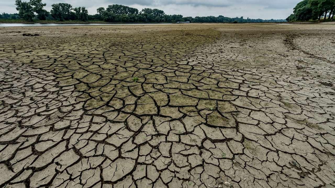 Trockenheit und Dürre in Bayern (Symbolbild)