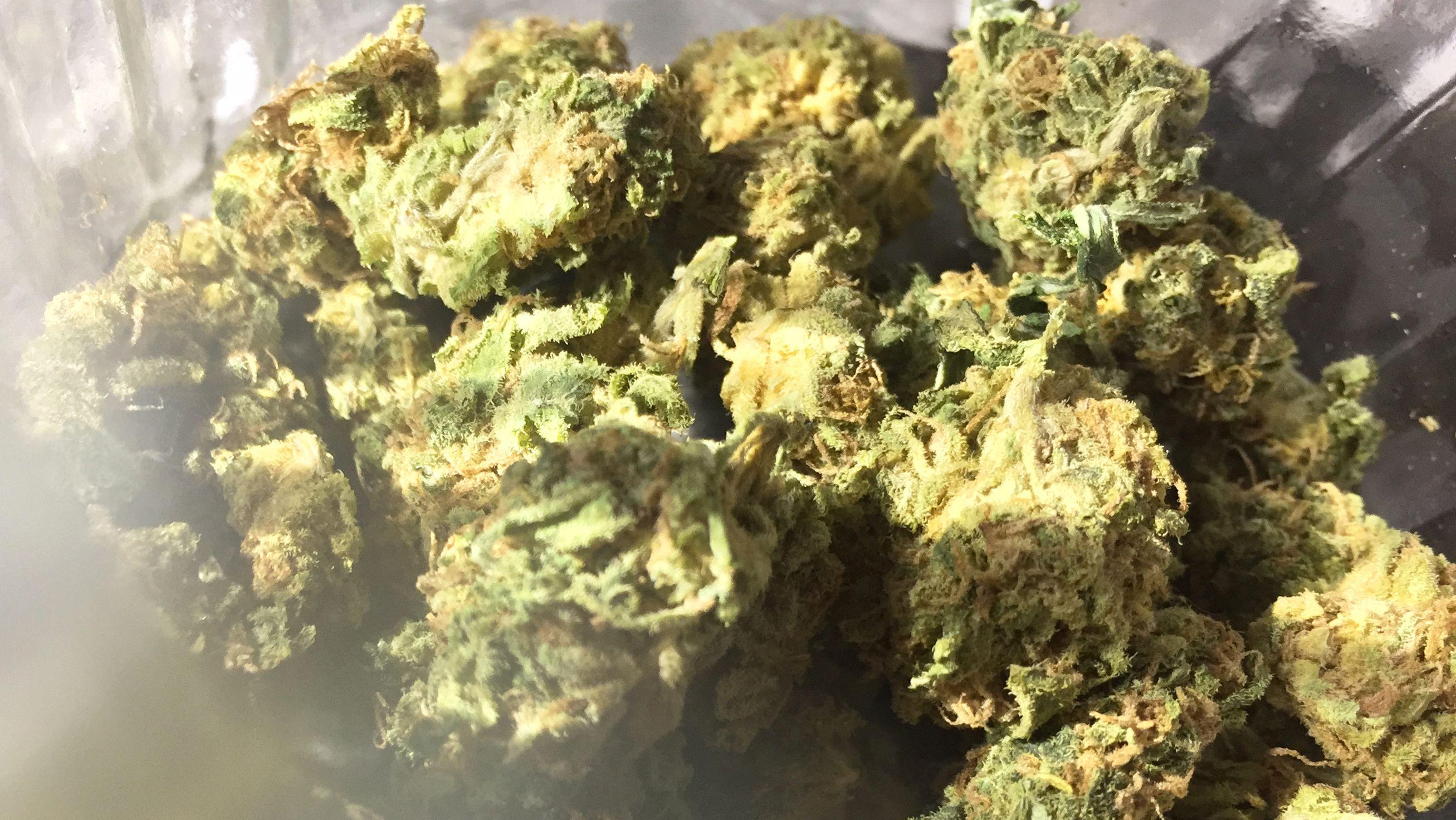 Cannabisblüten liegen in einem Glas. (Symbolbild)