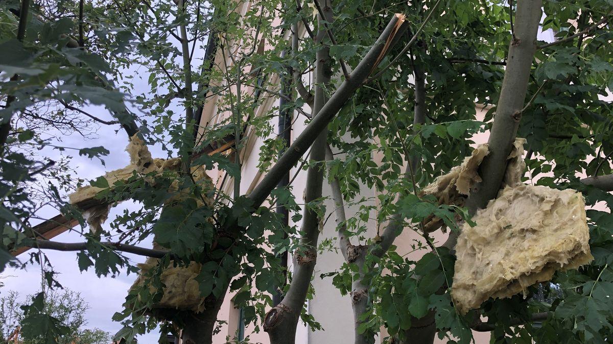 Dachisolierung in Bäumen in Halfing
