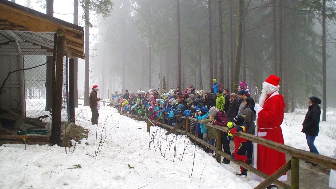 Ein Weihnachtsmann und viele Kinder hören einem Tierpfleger zu, der vor einem Gehege steht.
