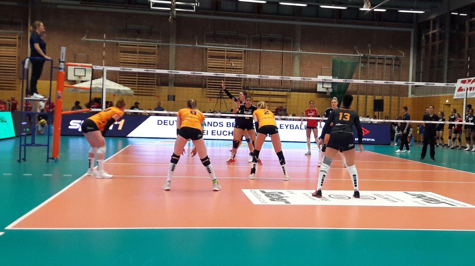 Niederbayerisches Derby als Highlight der Volleyball-Bundesliga - BR24