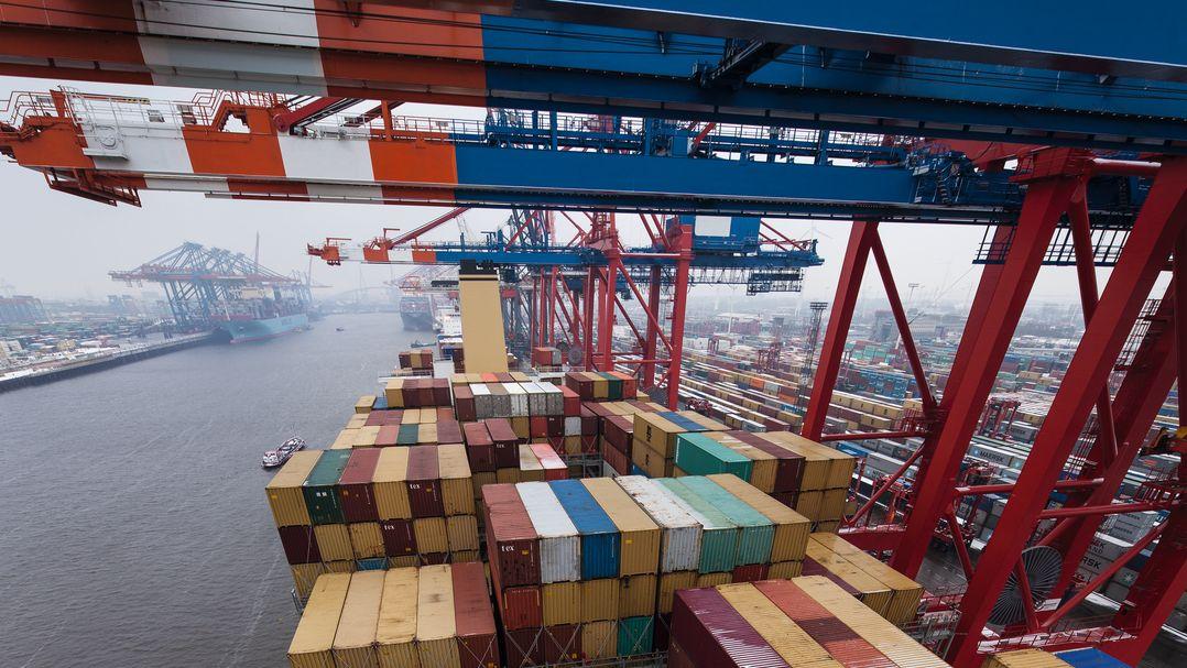 Zahlreiche Container stehen aufgestapelt unter Containerbrücken im Hamburger Hafen