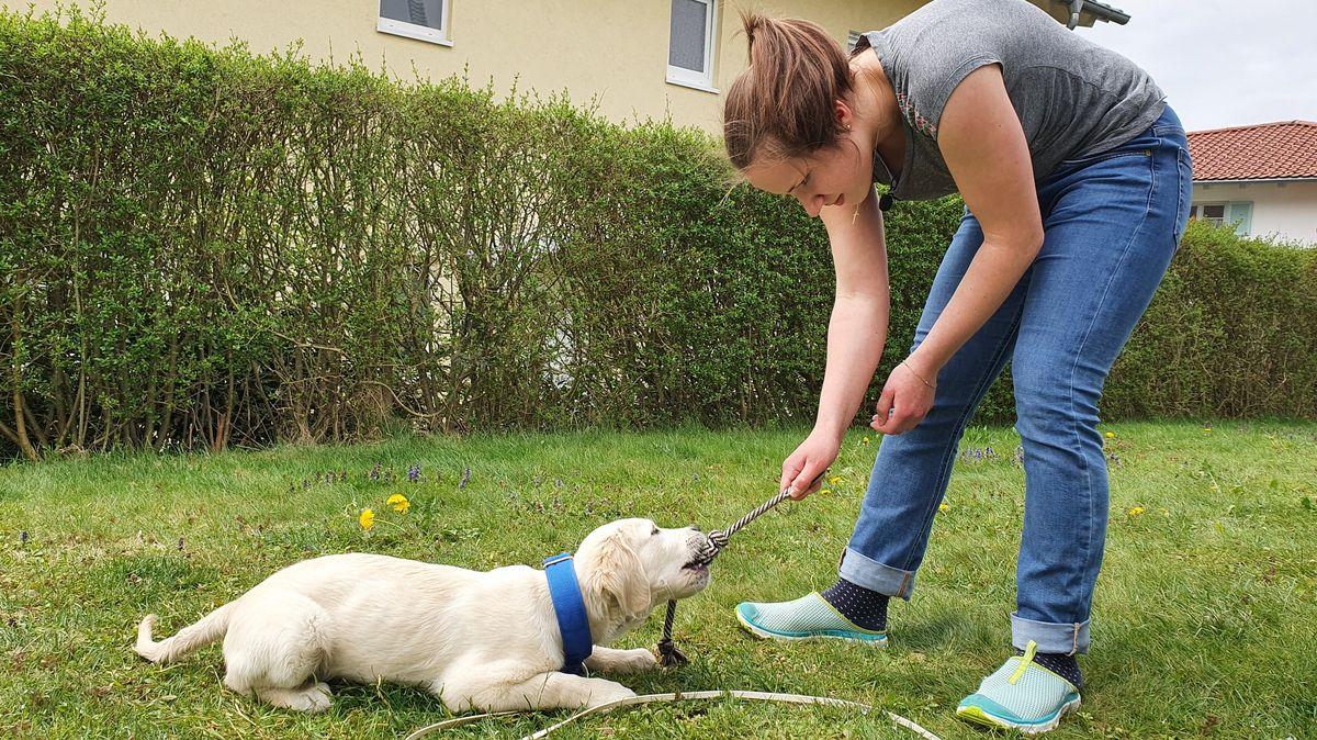 Tochter Alina mit dem Hundwelpen