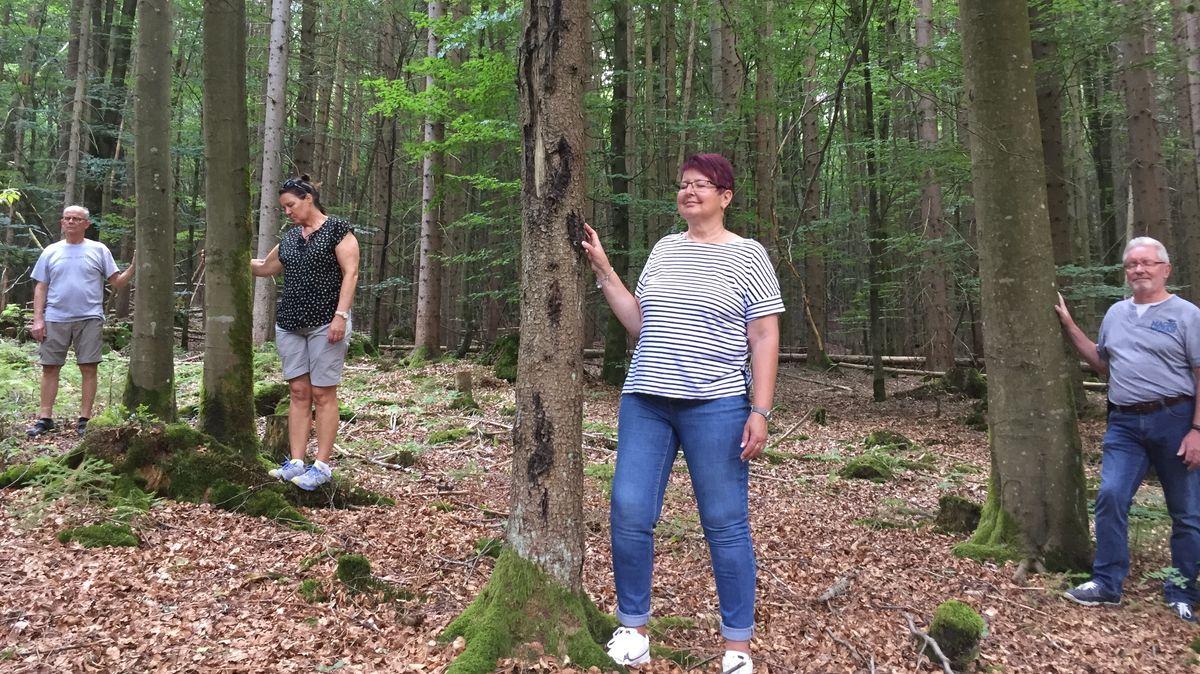 Teilnehmer beim Waldbaden