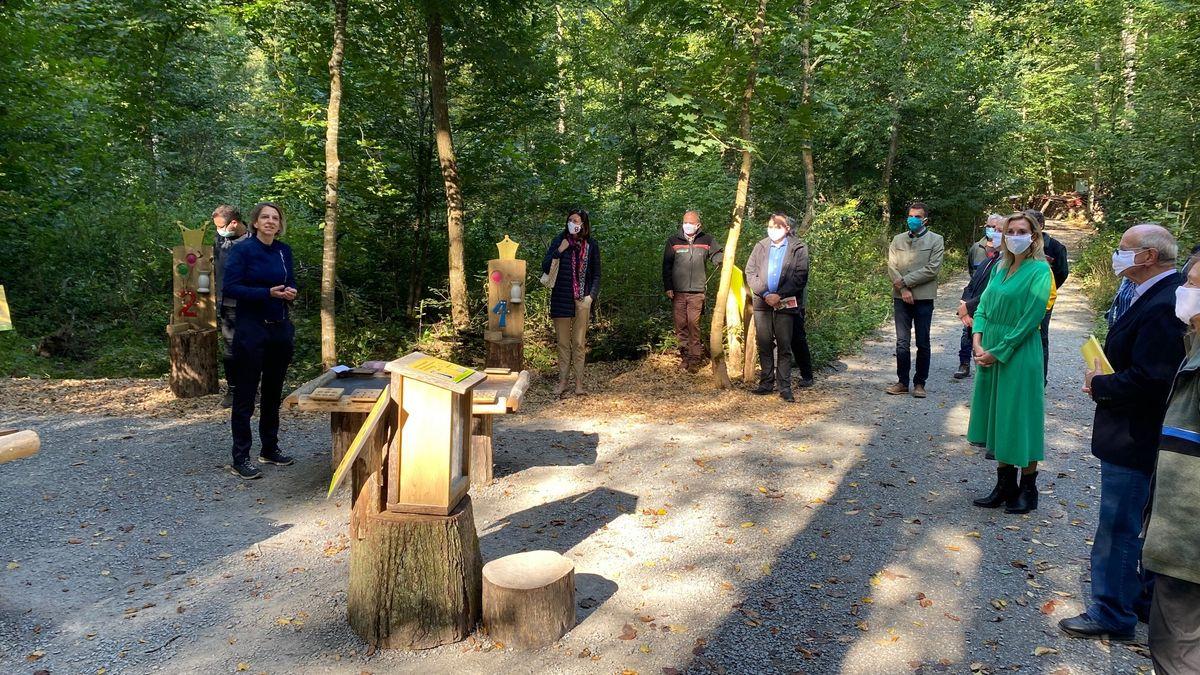 Der Zahlenwald im Gramschatzer Wald